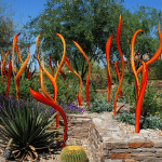 Outdoor patio at Desert Botanical Garden